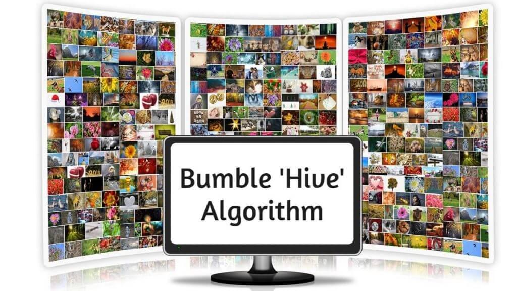 bumble-algorithm