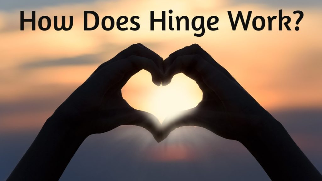 Best Hinge Answers That Work In [year] - Let's see what they are 6