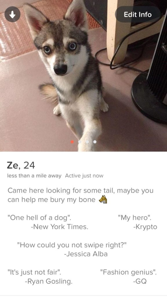 Tinder Memes - The BIG list of the funniest ones in [year] 74