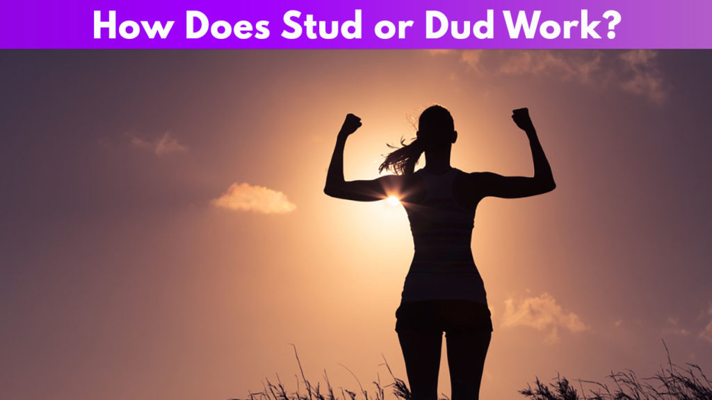 How Does Stud or Dud Work?