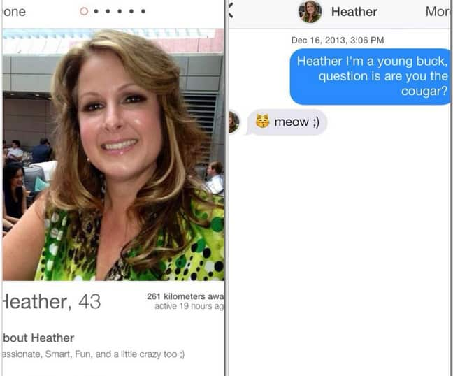 Tinder Cougar🐆: FULL Guide to Using Tinder to Find Cougars 3