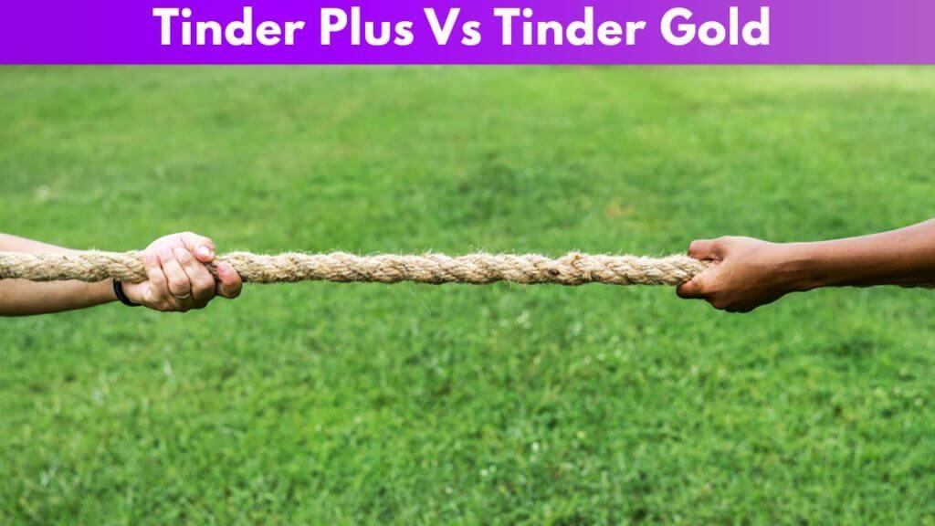 Tinder Plus Vs Tinder Gold