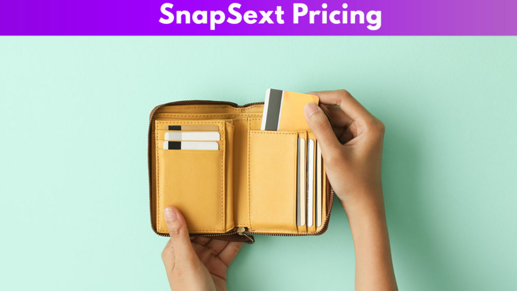 SnapSext Pricing