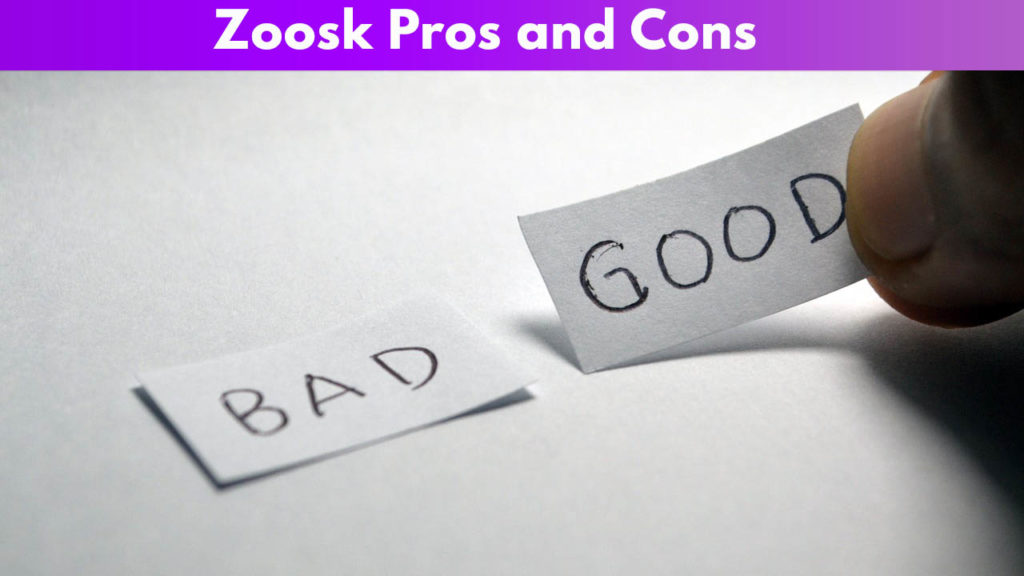 Zoosk Pros and Cons