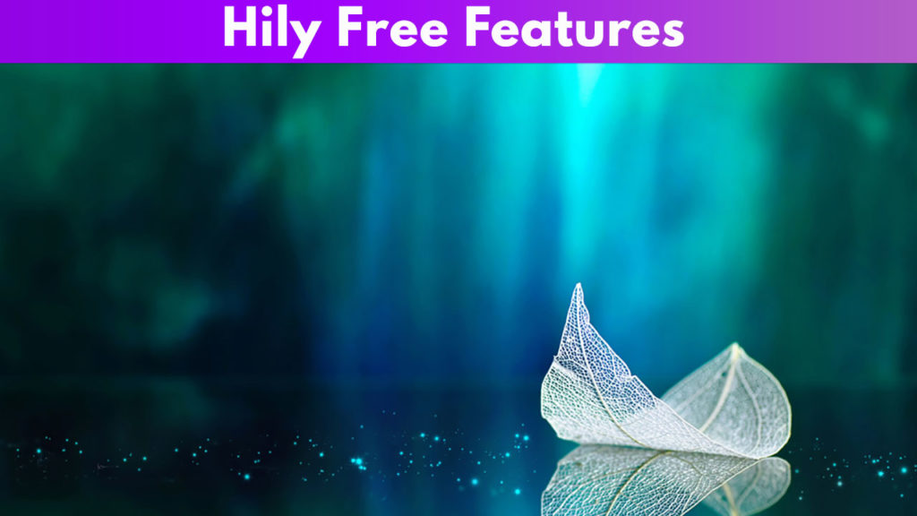 Hily Free Features