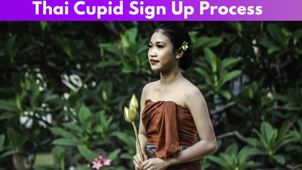 Thai Cupid Sign Up Process