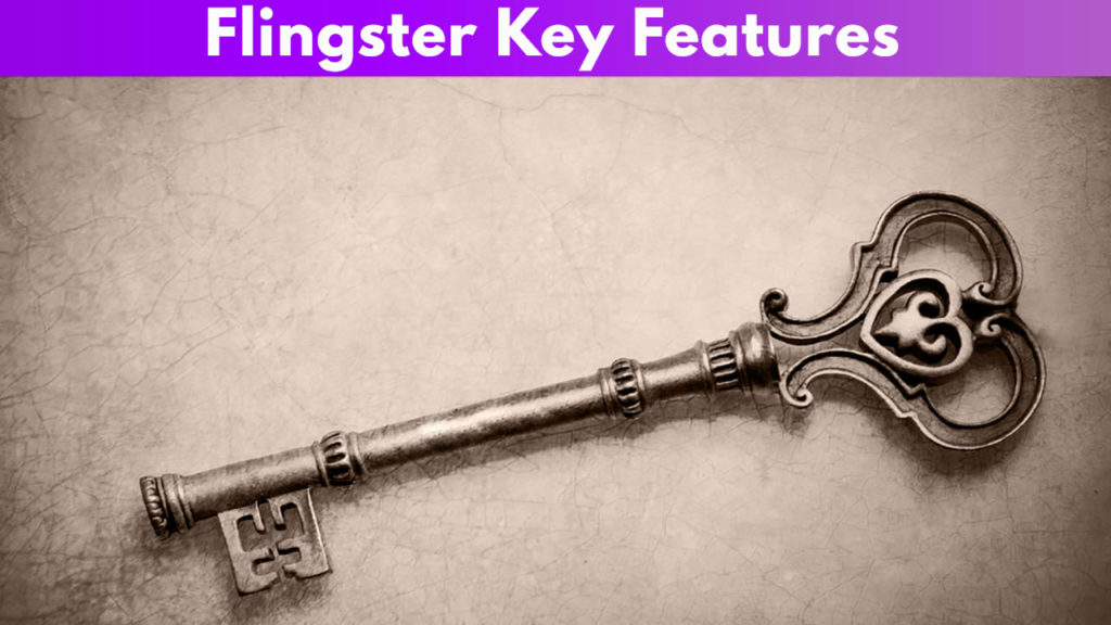 Flingster Key Features