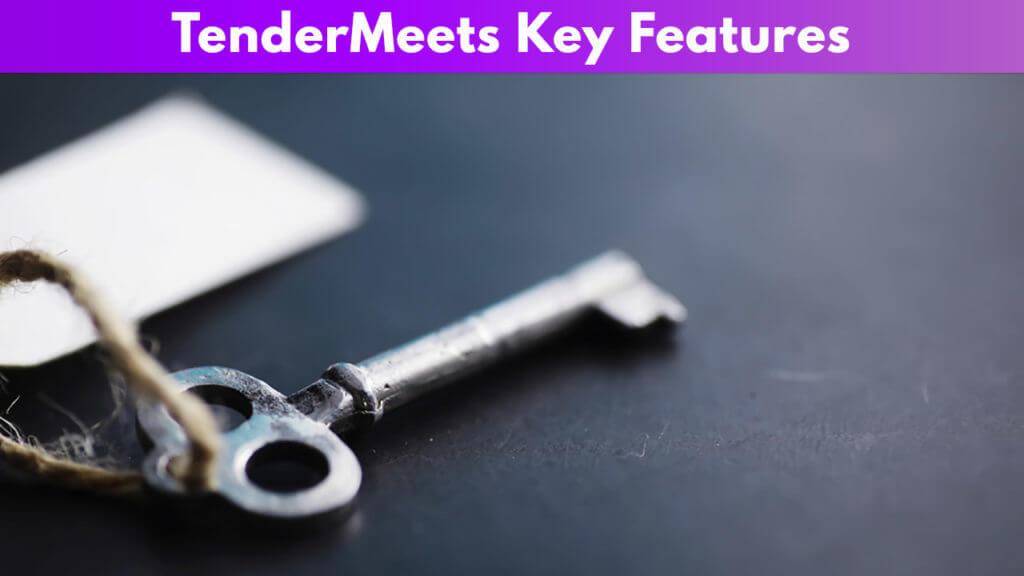 TenderMeets Key Features