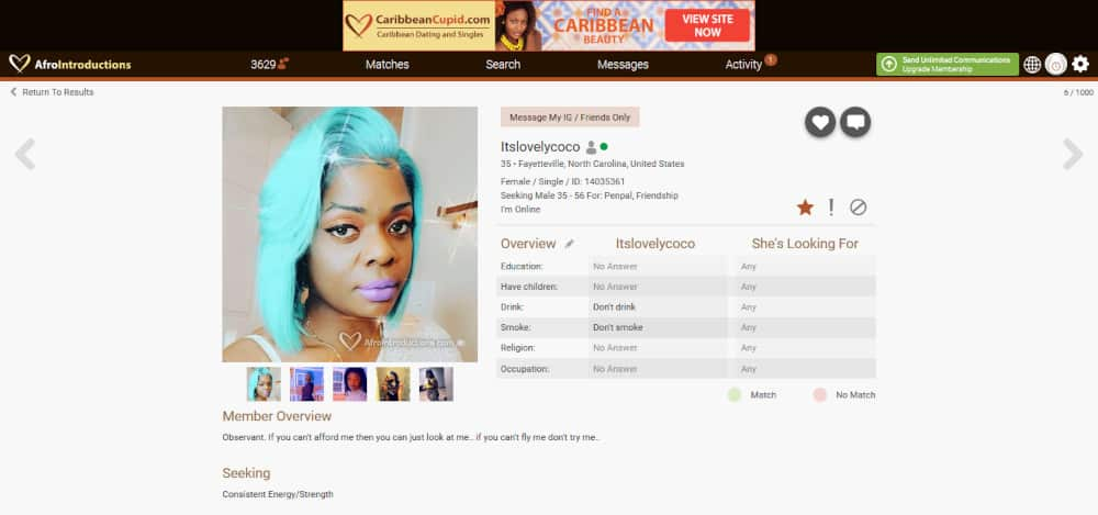 AfroIntroductions Dating Site Review [year] 7