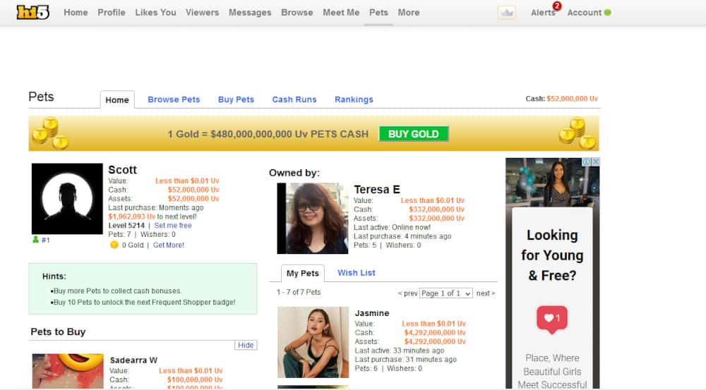 Hi5 Dating Site Review [year] 8