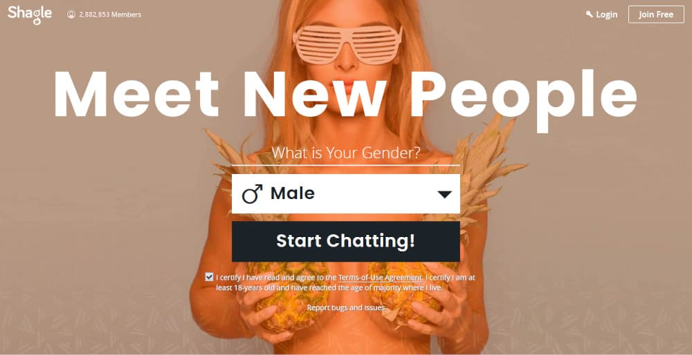 Shagle Live Chat Site Review 2020