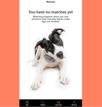 Dating Sites for Dog Owners [year] - Meet Major Dog Lovers 4