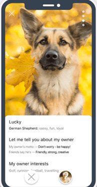Dating Sites for Dog Owners [year] - Meet Major Dog Lovers 22