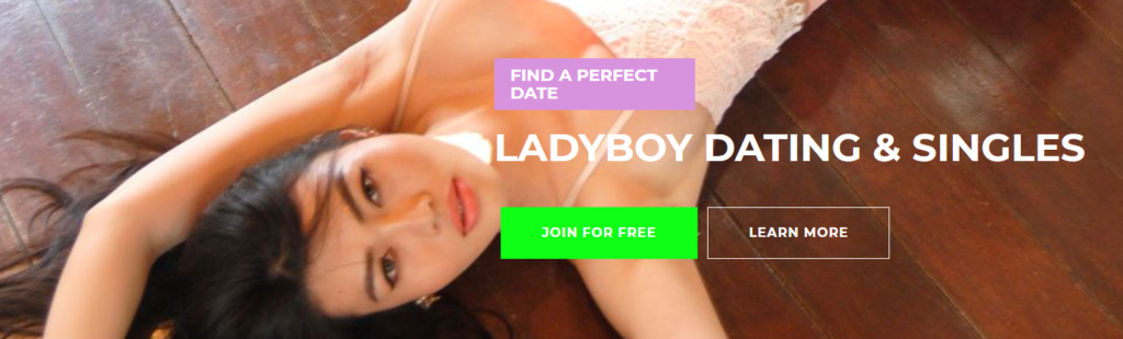 Ladyboykisses Review [year] - Fake Profiles or Real People? 2