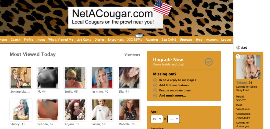 Netacougar Review [year] - [Real or Fake Hookups?   Features] 5