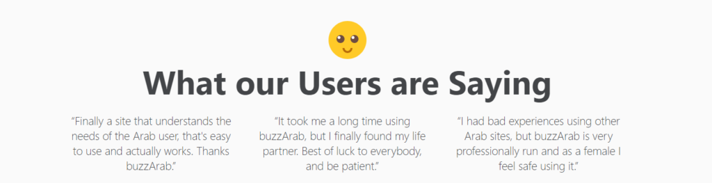 BuzzArab Review [year] - Is It Perfect or Scam? 6