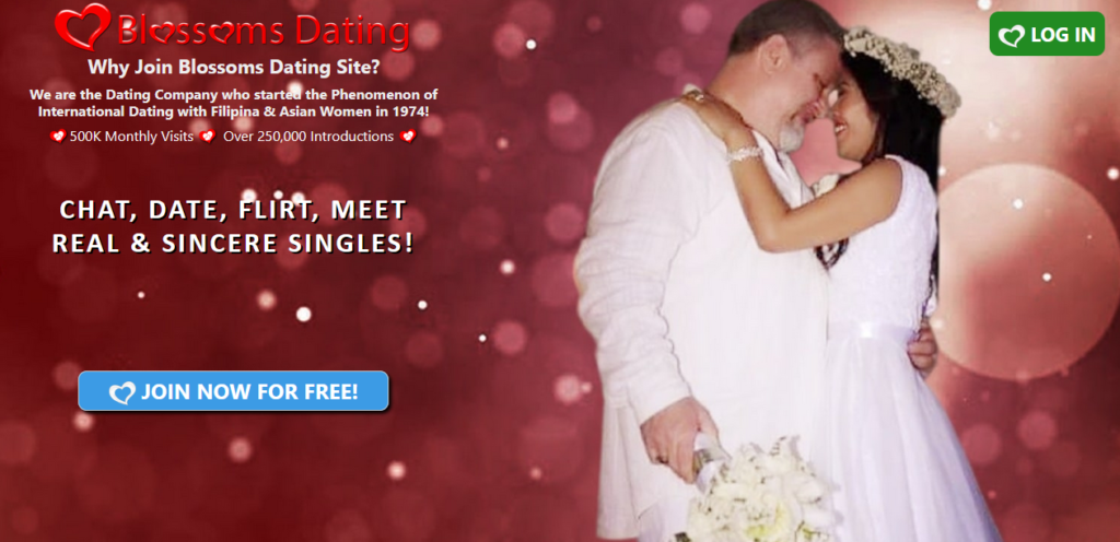 Vietnamese Dating Sites [year] - Can The Best Ones Be Wrong? 4